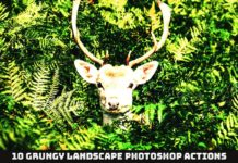 10 Free Grungy Landscape Photoshop Actions
