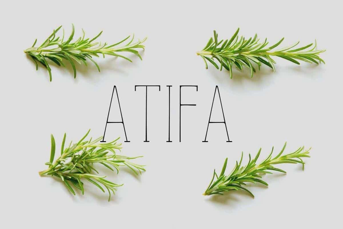 Free Atifa Serif Font