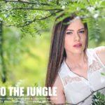 into the jungle presets