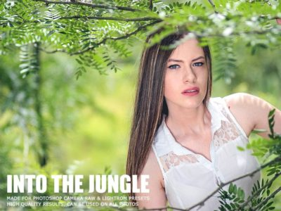 into the jungle presets