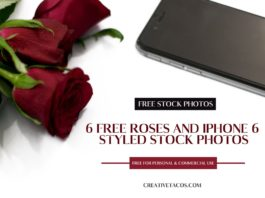 6 Free Roses and iPhone 6 Styled Stock Photos