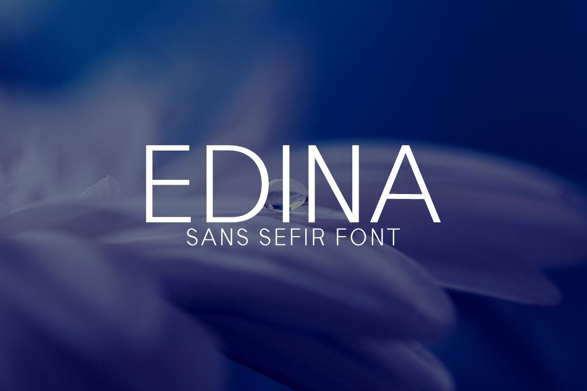 Free Edina Sans Serif Font on Text Feature Freebie