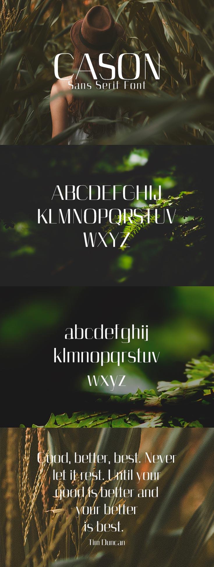 Free Cason Sans Serif Font
