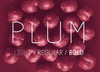 Free Plum Sans Serif Font