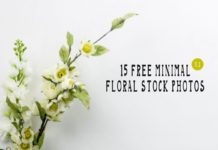 15 Free Minimal Floral Stock Photos - Vol.1