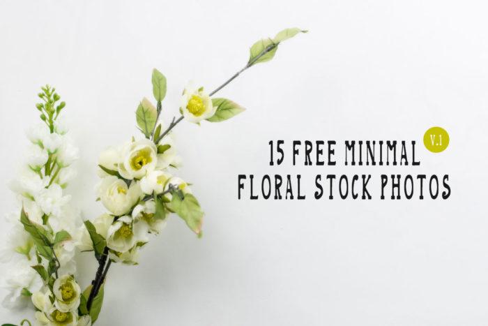 15 Free Minimal Floral Stock Photos - Vol.1