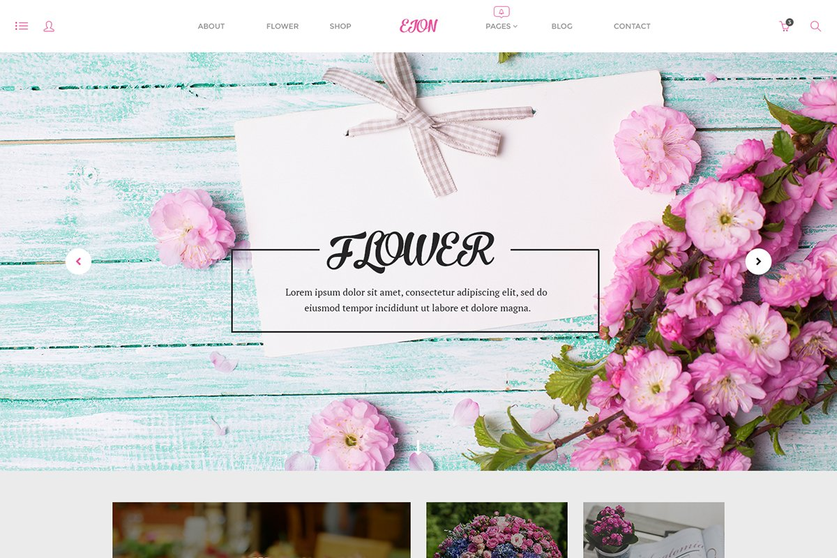 Free Eion PSD Template