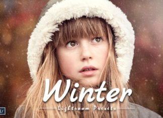 Free 20 Winter Lightroom Presets
