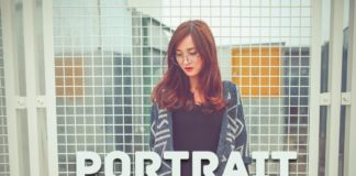 Free Portrait Effect Lightroom Presets