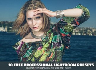 10 Free Professional Lightroom Presets