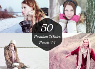 50 Free Winter Lightroom Presets Version 1