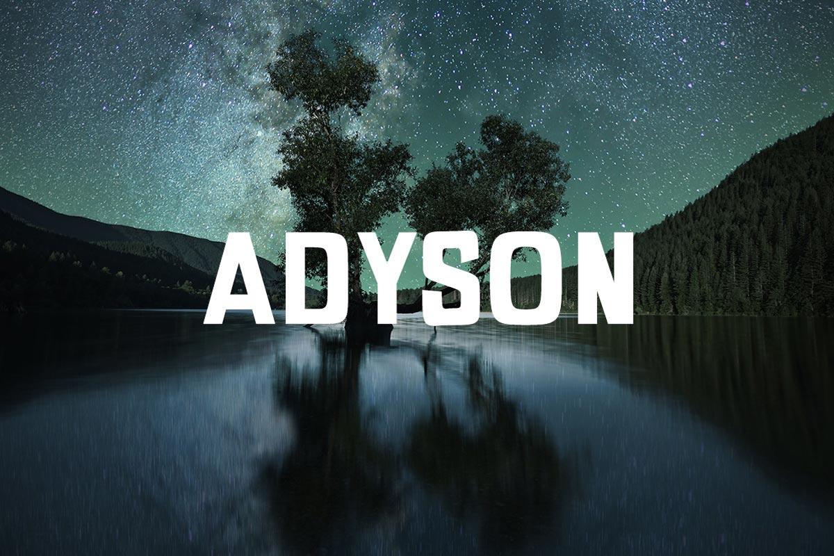 Free Adyson Sans Serif Demo Font