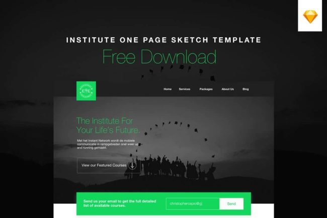 Free Institute One Page Sketch Template