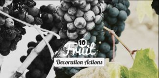 10 Free Fruits Decoration Photoshop Actions