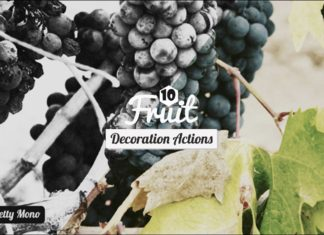 10 Free Fruits Decoration Photoshop Actions