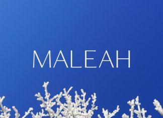 Free Maleah Sans Serif Font