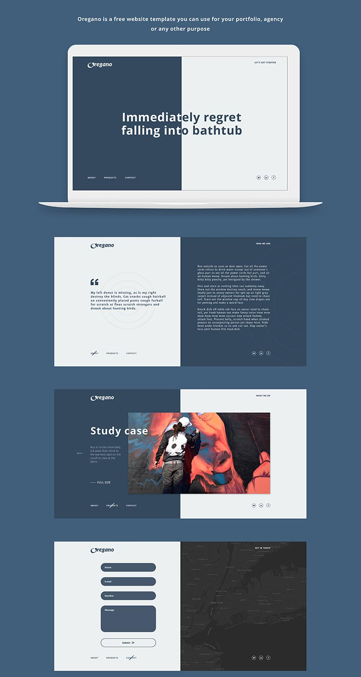 Free Oregano Website Template is a minimal template which contains four pages: Main Page, Product Page, Contact Page and About Page.