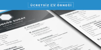 Free CV Sample PSD