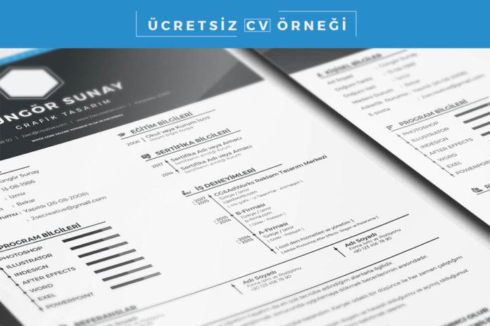 Free CV Sample PSD