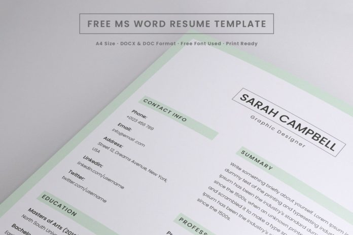 Free Resume Microsoft Word Template