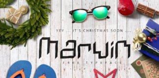 Free Marwin Display Font