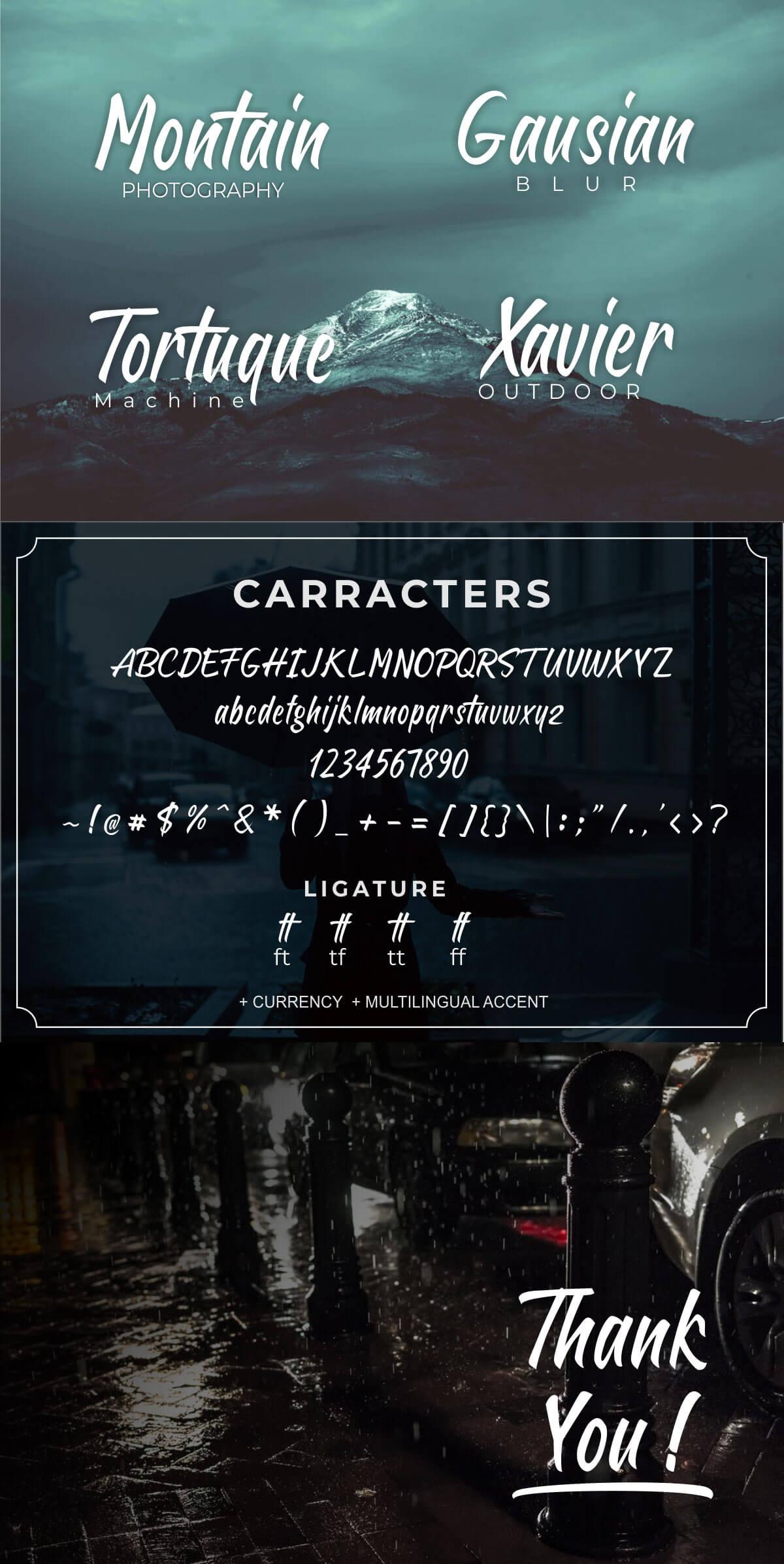Free Sheptember Brush Script Font