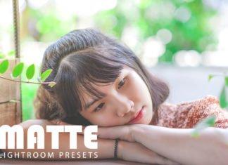 Free Matte Lightroom Presets