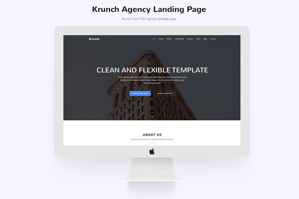 Free Krunch Agency Landing Page Design PSD