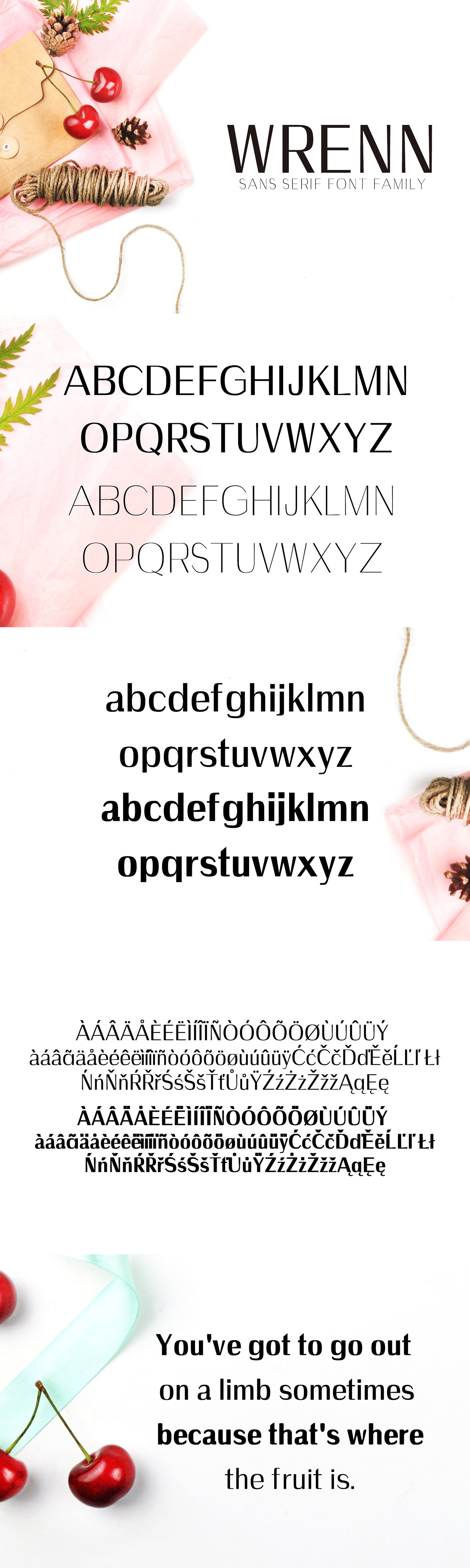 30+ Modern Sans Serif Fonts That Are Perfect For Brands
