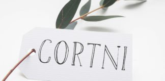 Free Cortni Handwriting Font