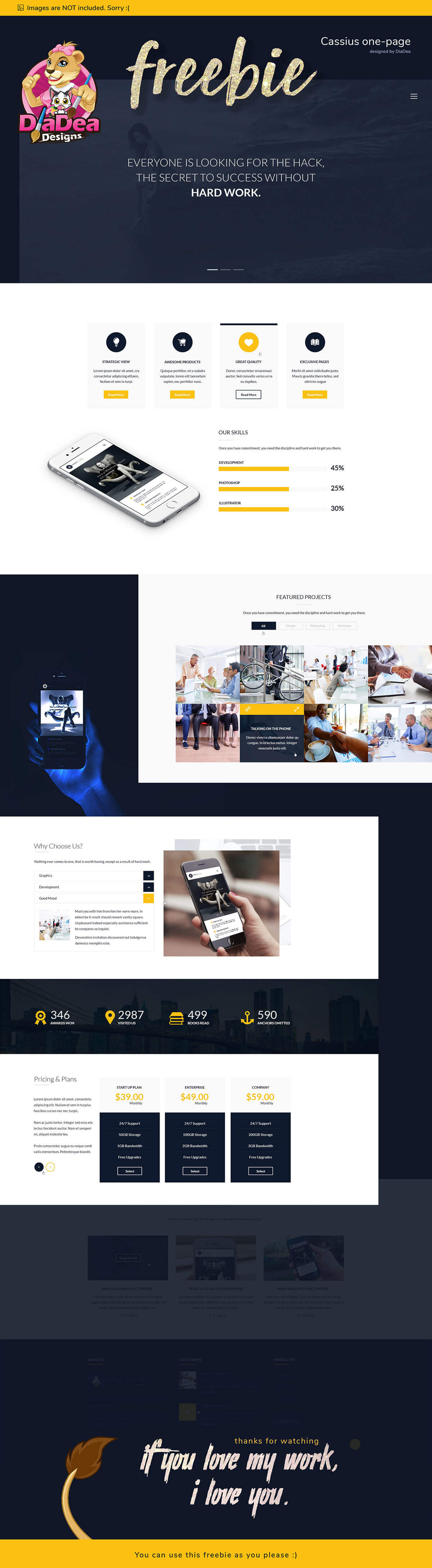 Free Cassius Business One Page Template