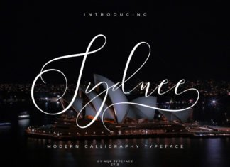 Free Syndee Modern Calligraphy Script Font