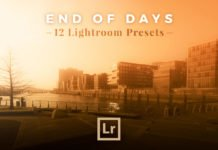 Free End of Days Lightroom Presets