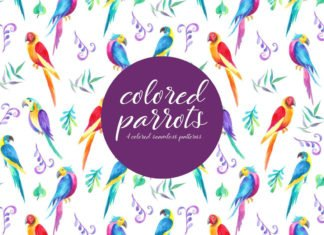 Free Colored Parrots Illustration Vector Pattern