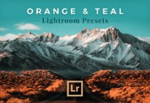 Free Orange and Teal Lightroom Presets