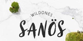 Free Sanös Brush Script Font