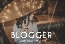 Free Blogger Lightroom Presets