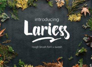 Free Lariess Handmade Brush Font