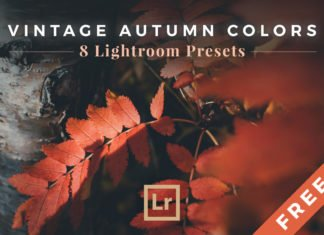 Free Vintage Autumn Colors Lightroom Presets