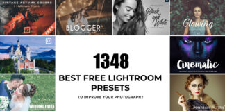 1348 Best Free Lightroom Presets to Improve Your Photography