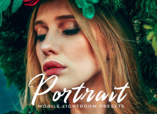 Free Portrait Lightroom Presets
