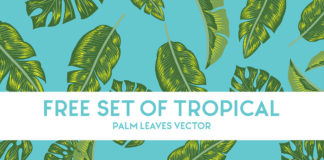 Free Tropical Palm Leaves Vector Set