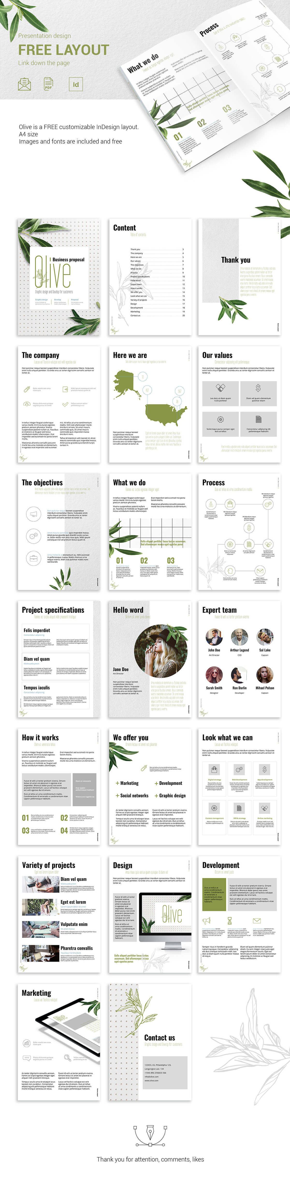 Free Olive Presentation Design Layout