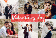 Free Valentines Day Lightroom Preset