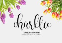 Free Charllie Script Font