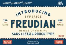 Free Freudian Sans Serif Font