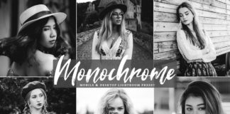 Free Monochrome Lightroom Preset