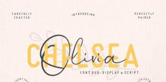 Free Chelsea Olivia Script Font
