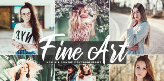 Free Fine Art Lightroom Preset