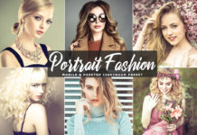 Free Portrait Fashion Lightroom Preset
